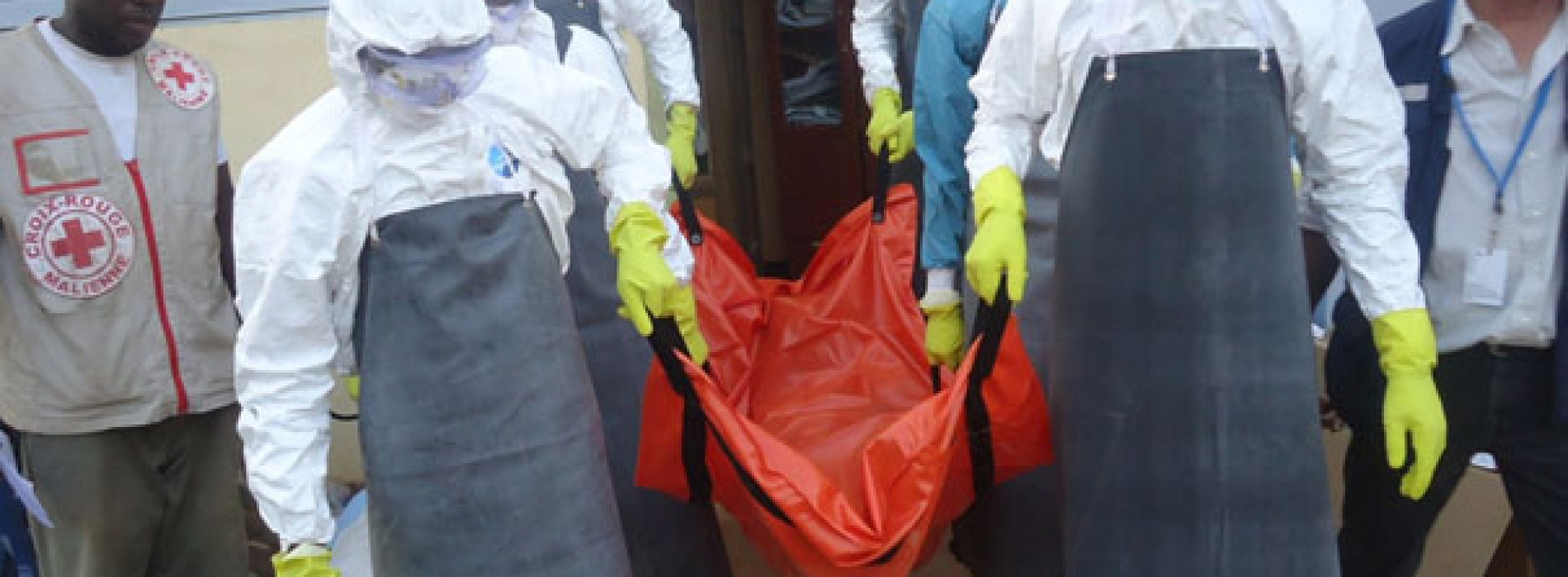 Riposte Ebola