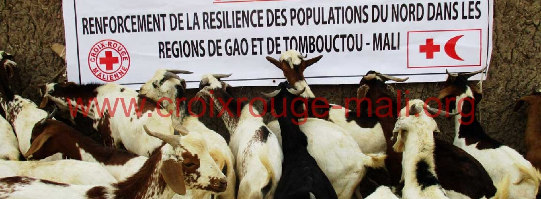 Nord-Mali : RENFORCEMENT DES CONDITIONS DE VIE DES POPULATIONS
