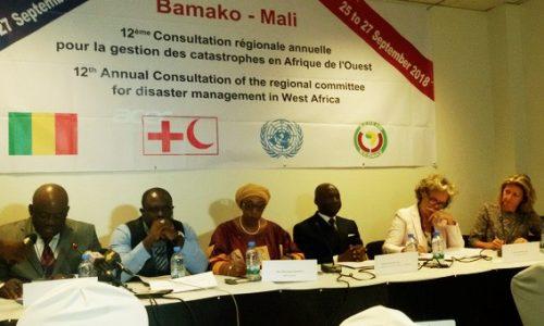 12ème Consultation Régionale du Comité pour la gestion des catastrophes en Afrique de l'Ouest (GECEAO)