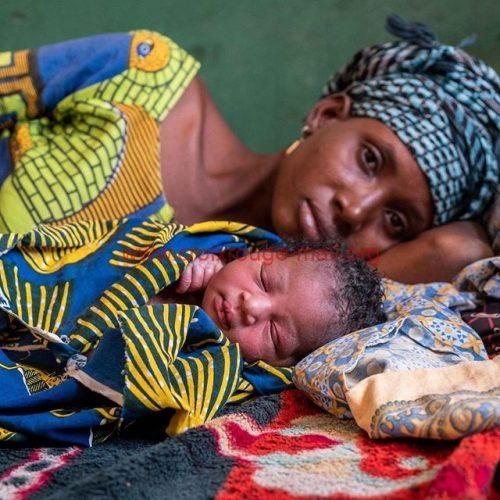 Vous aimerez visiter dans les maternités ?